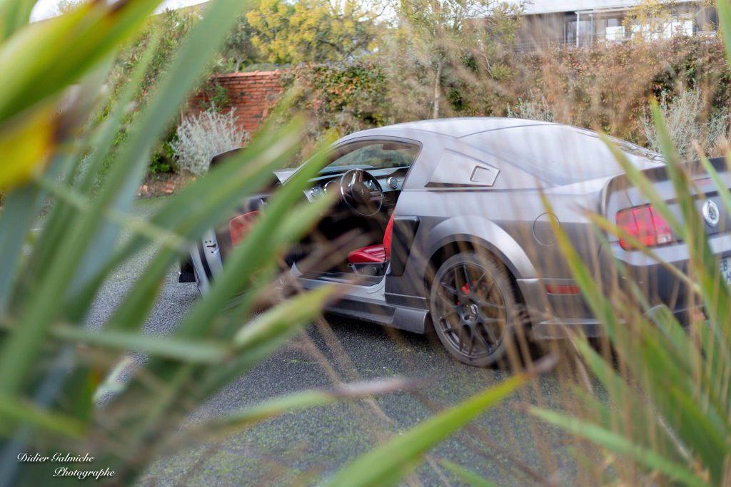Shoot Mustang Eleanor